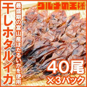 ホタルイカ 素干し 干しほたるいか 40尾×3パック|gourmet-no-ousama