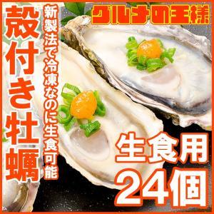 生牡蠣 殻付き 生食用カキ(24個入り 冷凍殻付き牡蠣 生食用)|gourmet-no-ousama