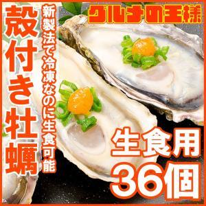生牡蠣 殻付き 生食用カキ(36個入り 冷凍殻付き牡蠣 生食用)|gourmet-no-ousama