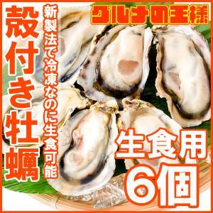 生牡蠣 殻付き 生食用カキ 生牡蠣 6個入り 冷凍殻付き牡蠣 生食用 新製法で冷凍なのに生食可能な殻付き牡蠣で濃厚な風味|gourmet-no-ousama