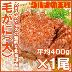 毛ガニ 毛がに 毛蟹 浜茹で 毛ガニ姿 平均 400g ×1尾|gourmet-no-ousama