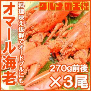 オマール海老 ロブスター 3尾 (BBQ バーベキュー) gourmet-no-ousama