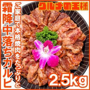 牛中落ちカルビ(味付け)<業務用 合計2.5kg 500g×5パック> 焼くだけで簡単に本場の味を楽...