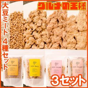 大豆ミート ソイミート ミンチ ボール チャンク フィレ 各3パック 合計12パック|gourmet-no-ousama