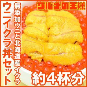 築地市場のウニイクラ丼セット(4杯分・無添加生ウニ200g&...