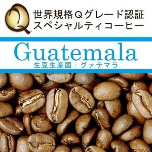 グァテマラ世界規格Qグレード珈琲豆(100g)(ガテマラSHB)|gourmetcoffee