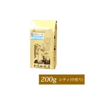 グァテマラ世界規格Qグレード珈琲豆(200g)(ガテマラSHB)|gourmetcoffee