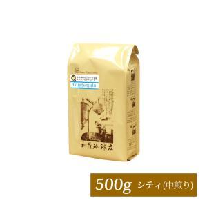 [500gお得袋]グァテマラ世界規格Qグレード珈琲豆(ガテマラSHB)|gourmetcoffee