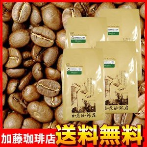 【業務用卸メガ盛り2kg】メキシコ世界規格Qグレード珈琲豆(Qメキ×4)|gourmetcoffee