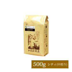 ウガンダ世界規格Qグレード珈琲豆(500g)/グルメコーヒー豆専門加藤珈琲店/珈琲豆|gourmetcoffee