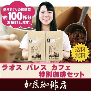 (1kg)ラオス・パレスカフェ特別珈琲セット(ラオス×2)/珈琲豆 gourmetcoffee