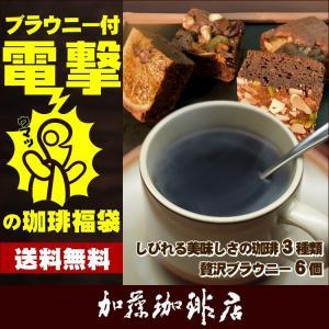 * (ホシフルーツ) ブラウニー* 電撃の珈琲福袋[Qブラ・Qケニ・ラス]/珈琲豆|gourmetcoffee