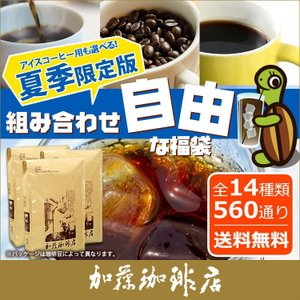 コーヒー豆 コーヒー 1.5kg 福袋 組み合わせ自由な福袋...
