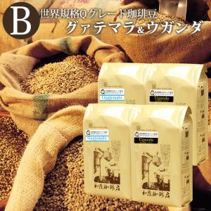Qグレード2種組み合わせセットB(Qウガ×2・Qメキ×2)/珈琲豆 コーヒー豆 コーヒー|gourmetcoffee