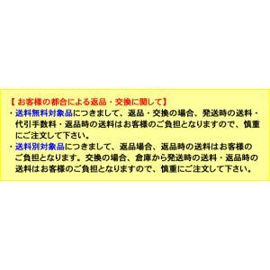 アプルラインド applerind 新感覚オールメッシュTシャツ(迷彩デザイン)  2018年モデル 全2色 メンズ  M-XL js1144 gp-store 03