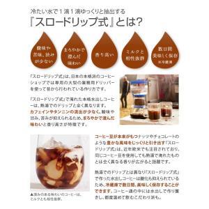 bruer ブルーアー コールドブルーアー 水出しコーヒー器具 水出しアイスコーヒー コールドブリューコーヒー ドリッパー|gpecoe|03