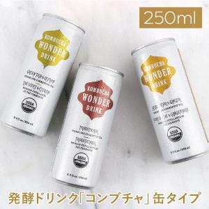 コンブチャワンダードリンク【炭酸飲料 コンブチャ 紅茶キノコ 紅茶きのこ KOMBUCHA WONDER DRINK 発酵 美容】|gpecoe