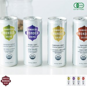 コンブチャワンダードリンク 4缶セット【コンブチャ 炭酸飲料 紅茶キノコ 紅茶きのこ 発酵 飲み物 美容】|gpecoe