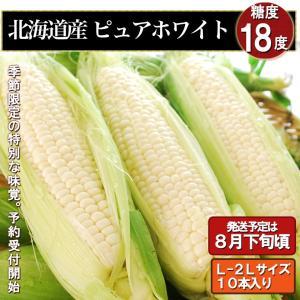 ■商品名 北海道産【ピュアホワイト】<br> ■内容量 L-2Lサイズ10本入り<...