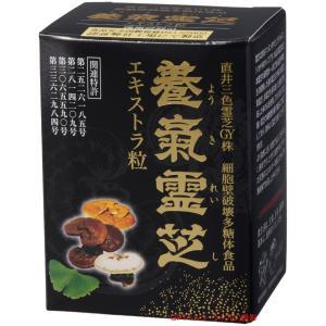 日本栽培製品!献上品の直井霊芝GY株、新・養気霊芝エキストラ粒(270粒入り)|gpt