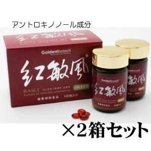 アントロキノノール・紅敏風・小粒(120)×2箱セット リピート専用!|gpt