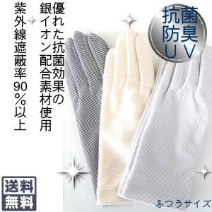 抗菌防臭機能付き手袋ボーダー柄ふつうサイズ ポイント10倍|graceofgloves