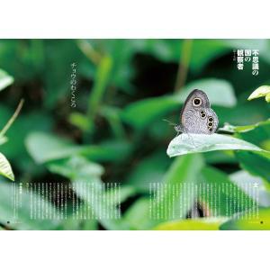 Grandeひろしま Vol.17 夏号 grande-hiroshima 03
