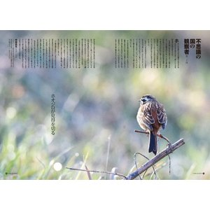 Grandeひろしま Vol.20 春号|grande-hiroshima|03