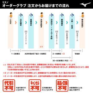 <受注生産>ミズノ(MIZUNO) 軟式用オーダーグラブ・ミット ミズノプロ BSS grandslam 02