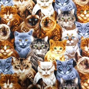 CATS MICHAEL SEARLE  (USAコットン 生地 布)|granny