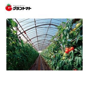 晴天 屋根用 0.15mm×740cm(中接) 切り売り1m ノンキリーあすか アキレス農ビ 【ビニ...