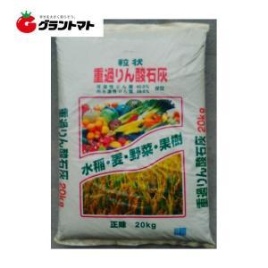 重過リン酸石灰 粒状 20kg 単肥 リン酸42%【取寄商品】|grantomato