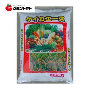 ケイカエース 20kg 0-2-20 珪酸入り肥料 (苦土3%ホウ素0.05%入り)【取寄商品】|grantomato