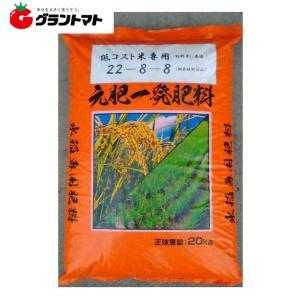 低コスト米専用肥料 288 20kg 元肥一発肥料 化成 22-8-8【取寄商品】|grantomato