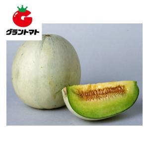 プリンスメロン 100粒 野菜種子【取寄商品】 grantomato