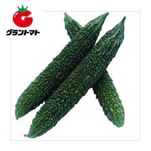 グリーン長れいし ゴーヤ 1L 野菜種子【にがうり ニガウリ】【取寄商品】 grantomato