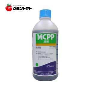 MCPP液剤 500ml スギナやクローバーに効く芝・緑地用除草剤 【丸和バイオケミカル】|grantomato