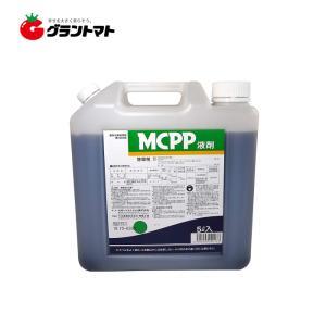 MCPP液剤 5L スギナやクローバーに効く芝用除草剤 丸和バイオケミカル|grantomato