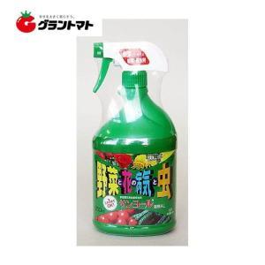 サンヨール液剤AL スプレータイプ 850ml  米澤化学 grantomato