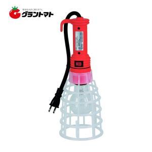 屋内用ハンドランプ CFH-100-0.3 100W 耐震球 Caster|grantomato