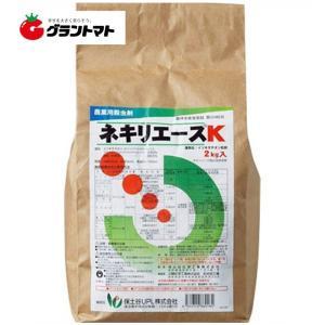 ネキリエースK 粒剤 2kg ネキリムシ殺虫剤...の関連商品2