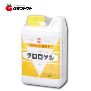 クロロゲン黄 1kg P(リン酸)-K (加里)型 花芽分化期用葉面散布液肥 玉名化学|grantomato