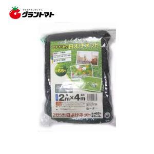 遮光ネット 2m×4m 遮光率65% 農園芸用日よけシート シンセイ grantomato
