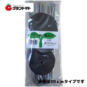 ヘアピン杭黒丸付15cm 10p シートキーパー シンセイ|grantomato