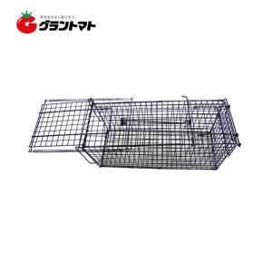 アニマルキャッチャー Mサイズ LSL-HB-M 害獣捕獲檻 シンセイ|grantomato
