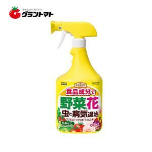 あめんこ 1000mL入 食品成分の殺虫殺菌剤スプレー アースガーデン アース製薬 grantomato