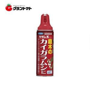 カダンK 450ml 園芸用殺虫スプレー フマキラー grantomato
