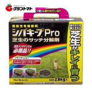 シバキープPro芝生のサッチ分解剤 2.8kg 芝生用肥料 レインボー薬品|grantomato