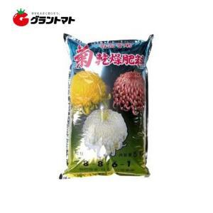 乾燥肥料 8-8-6 5kg 菊用の肥料 国華園|grantomato