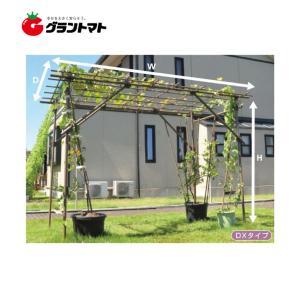 フルーツパーゴラDX 果樹用棚支柱セット 【メーカー直送】|grantomato